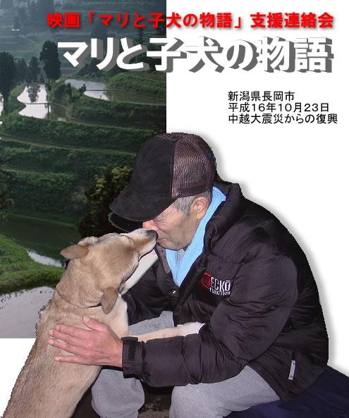 まり と 子犬 の 物語
